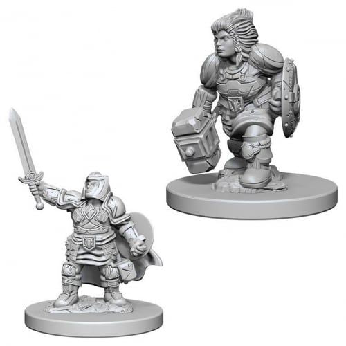 Nolzur's Marvelous Miniatures: Dwarf Female Paladin Blister Pack (Wave 3)