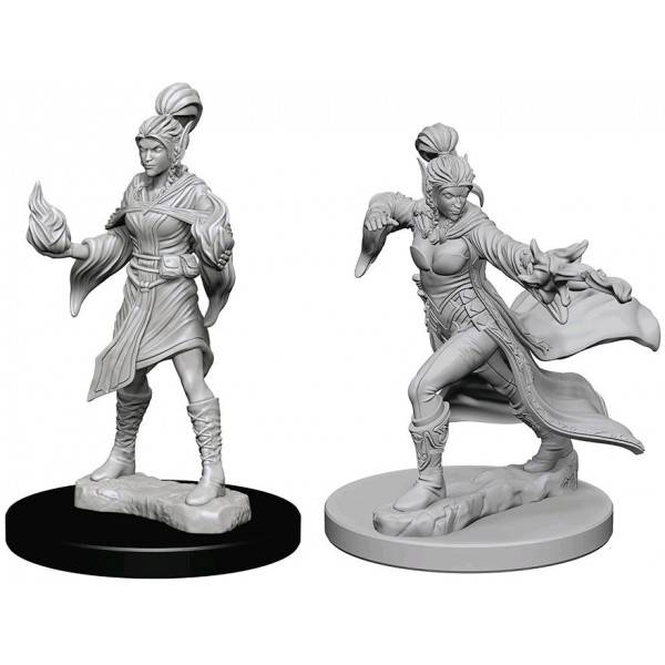 Pathfinder Deep Cuts: Elf Female Sorcerer Blister Pack (Wave 1)