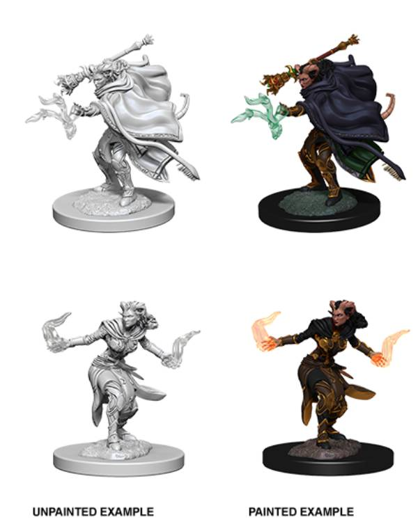 Nolzur's Marvelous Miniatures: Female Tiefling Warlock (Wave 6)