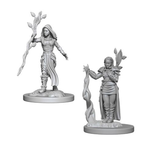 Nolzur's Marvelous Miniatures: Human Female Druid Blister Pack (Wave 2)