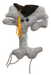 Graduation Brain Cell | Giant Microbe