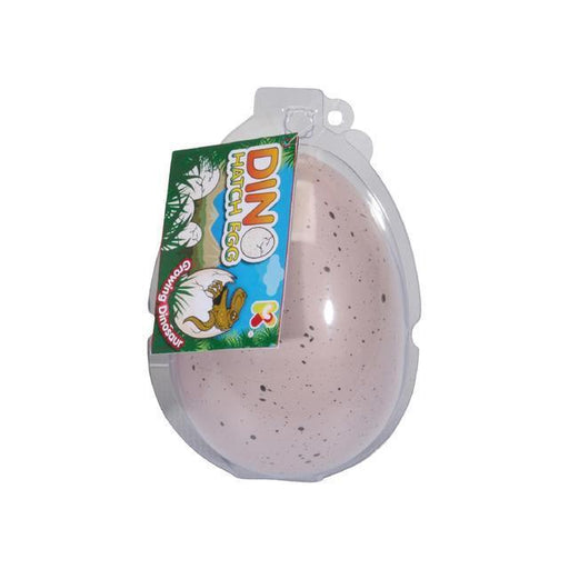 Dino Hatch Egg | Large Dinosaur Grow