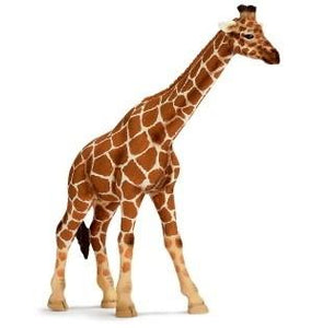 Collecta | Giraffe Figurine