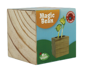 Mrs Greens | Magic Beans