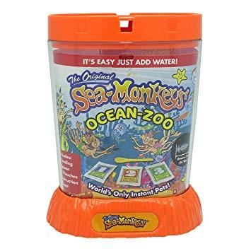 Sea-Monkeys | Ocean Zoo