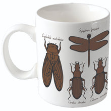 Load image into Gallery viewer, Colour Change Mugs | Entomology Insect