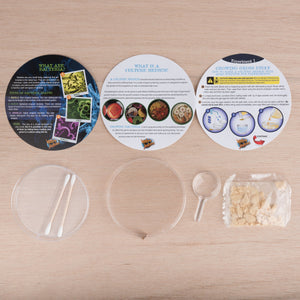 Revolting Science | Petri Dish Grow And Learn About Bacteria