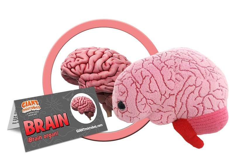 Giant Microbe | Brain Organ