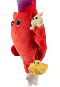 Xl Heart Organ | Giant Microbe