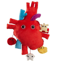 Load image into Gallery viewer, Xl Heart Organ | Giant Microbe