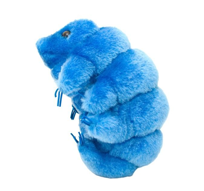 Giant Microbe | Waterbear Tardigrade