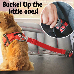 New Pet Seat Belt