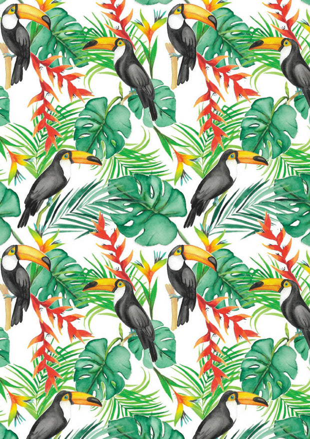 Body manches longues - Toucan