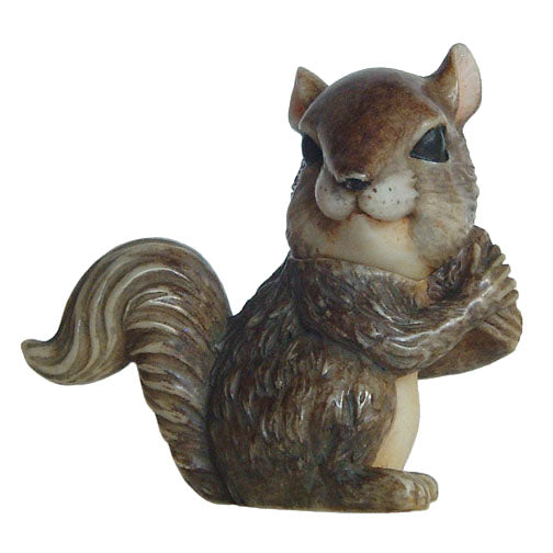 nuttie squirrel pot belly