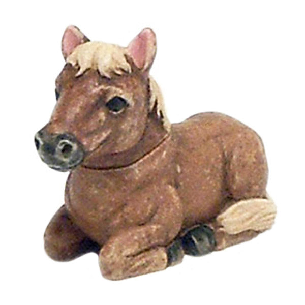 sugar miniature pony pot belly