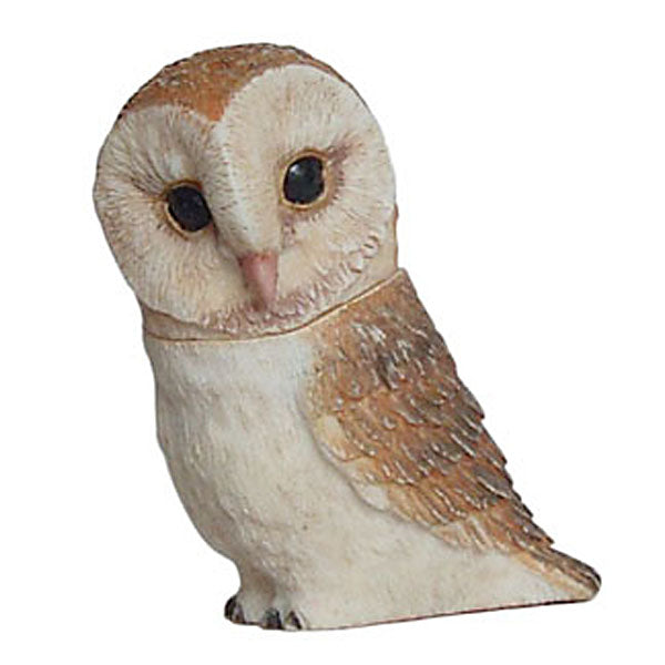barn owl pot belly