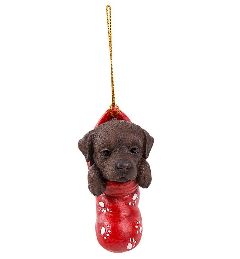 chocolate lab in christmas stocking ornament full view