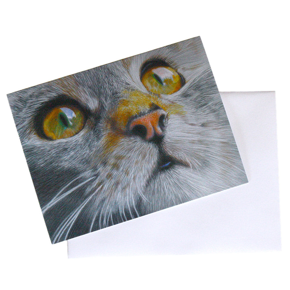 illustrated calico kitten note card