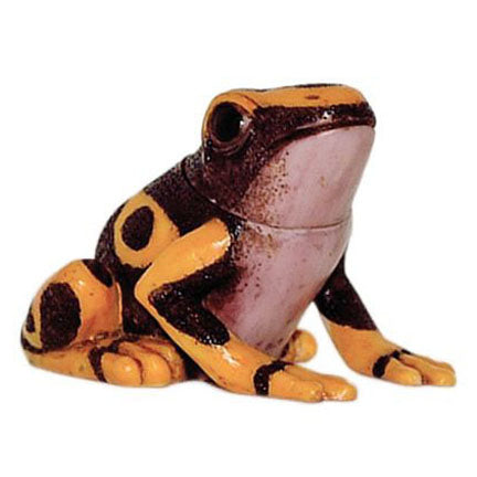 Lindo - Harmony Ball Yellow-Banded Dart Frog Pot Belly