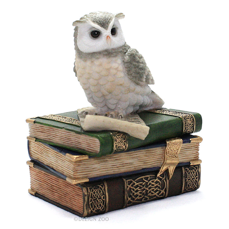 owl on books jewelry box alt view