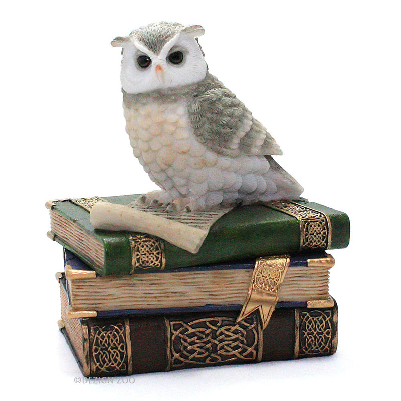 owl on books trinket box