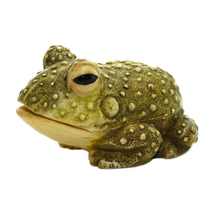 prince bull frog pot belly alt view