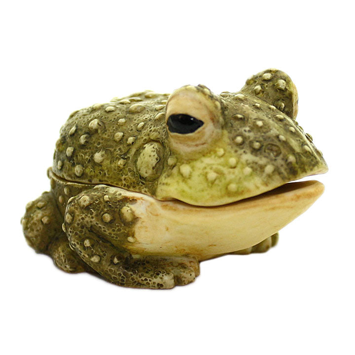 prince bull frog pot belly