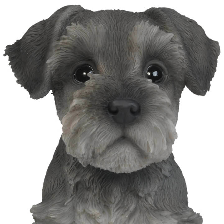 schnauzer puppy figurine face detail