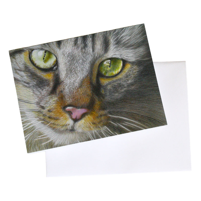 fine art silver tabby note card