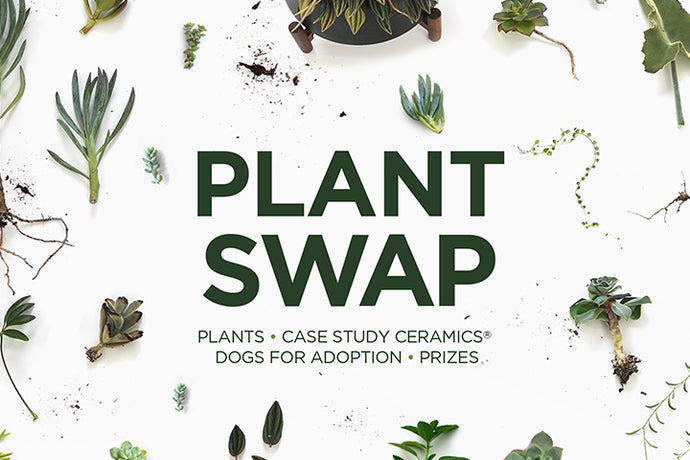 You're Invited To A Plant Swap
