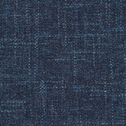 TII: Tapatio Blue Palm Swatch