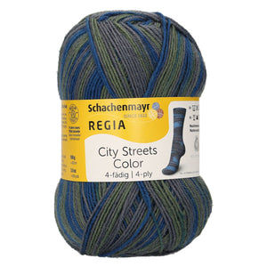 REGIA City Streets Color 4ply 02889
