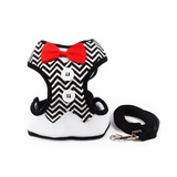 Checkered Cat Harness and Leash