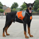 Outdoor Dog Backpack Harness