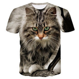 Gorgeous Knitted T-shirts with cat photo finish print.