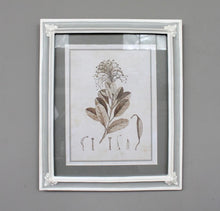 Load image into Gallery viewer, Botanical Frame 2 - www.proven-salle.com