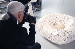 Interview with Choupette Lagerfeld