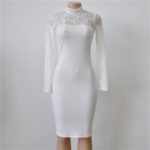 Elegant Lace Party Dress