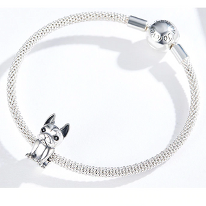 Special French Bulldog Charm