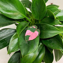 Load image into Gallery viewer, Philodendron Pink Princess Lapel Pin