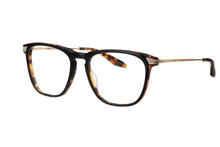 Matte Black Amber Tortoise / Antique Gold