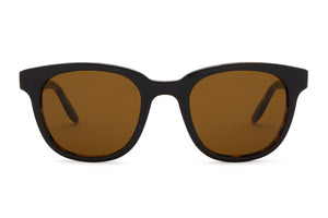 Black Amber Tortoise / Vintage Brown (AR)