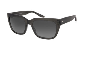Matte Dusk / Nightfall Polarized (AR)