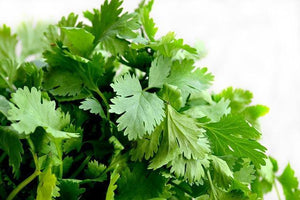 Cilantro $1.49 per bag vegetable Parkesdale Market