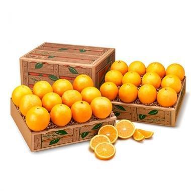 FLORIDA VALENCIA ORANGES (Shipping Included) Gift Baskets Parkesdale Market