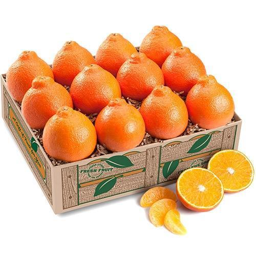 Honeybells (Minneola Tangelo) ALL HONEYBELLS (Shipping Included) Gift Baskets Parkesdale Market