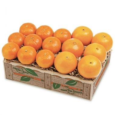 Tangerines & Navels (Shipping Included) Gift Baskets Parkesdale Market
