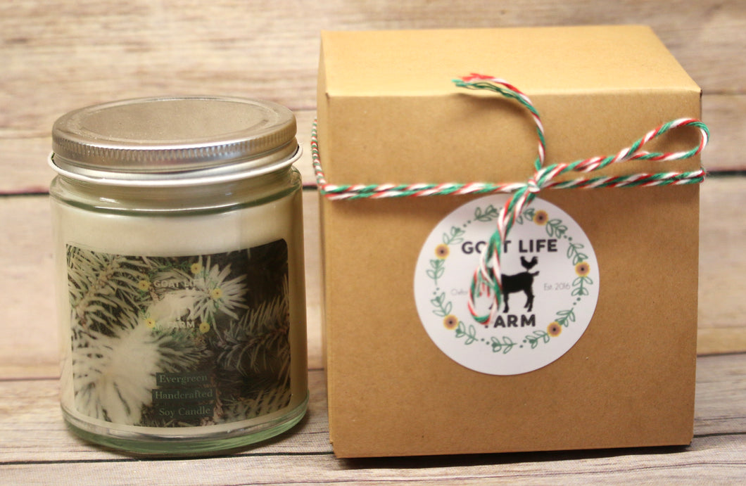 Holiday Soy Candle - Evergreen