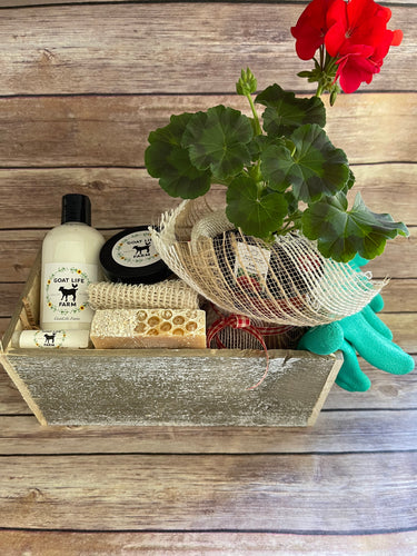 Honey Oatmeal Basket