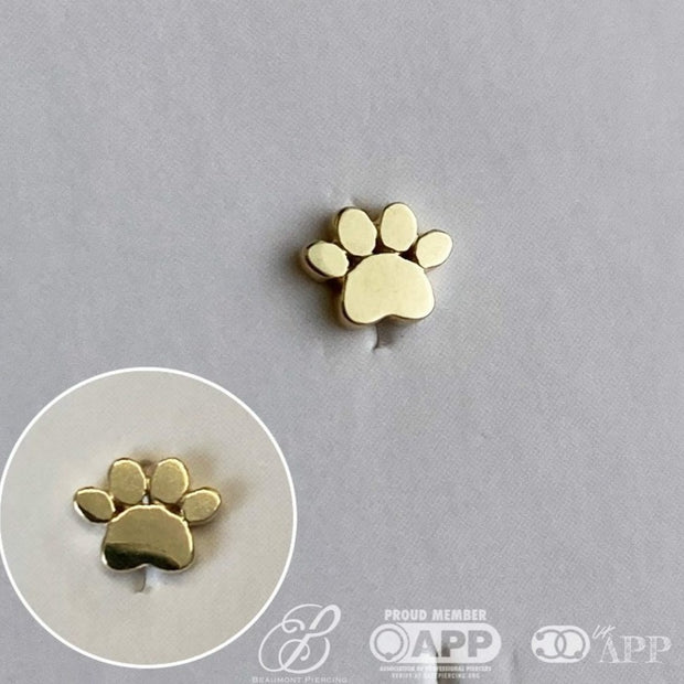 Gold Dog Paw